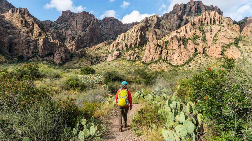 Person hiking along a dirt path, between canyons. Greenery surrounding him.